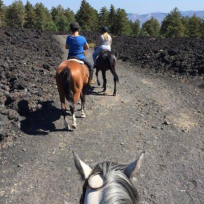 Heerlijk paardrijden op de noordzijde van de Etna!