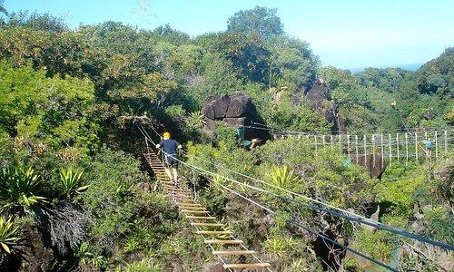 plusieurs parcours traversent la ravine