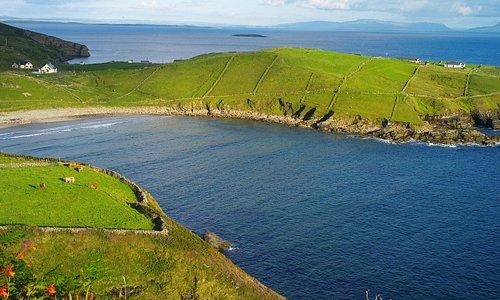 Ocean Spray B&B est situé sur la presqu'île, au centre de la photo, qui se termine par Muckross