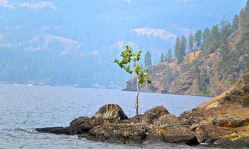 Green Bay of Lake Pend Orielle