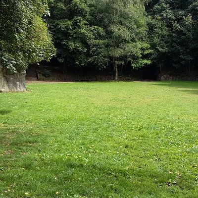 open field - events area, next to picnic area