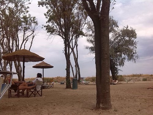 sand gate beach