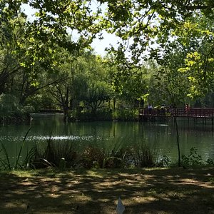 Jade lake, the centerpiece of the grounds.