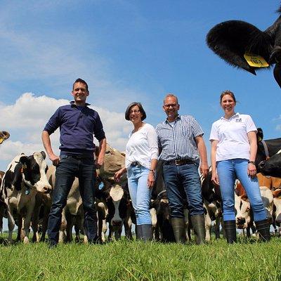 Klaas-Jan, Petra, Harry en Irene met de koppel koeien