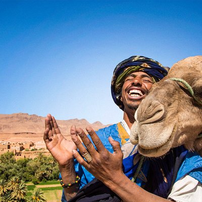 On The Go Tours in Morocco