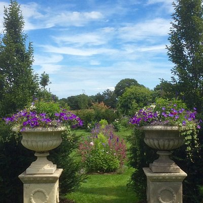 Our gardens are looking really inviting at the moment.