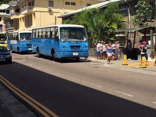 typical Tata bus