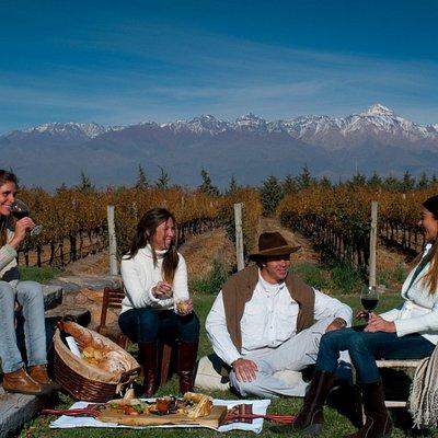 Mendoza Holidays Tours de Vinho