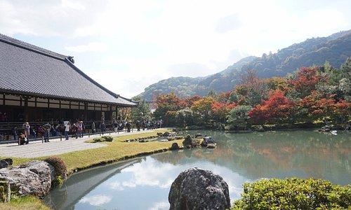 Temple & garden