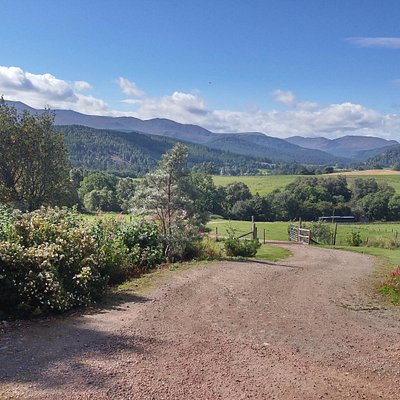 The road up to the gallery, looking towards Braemar