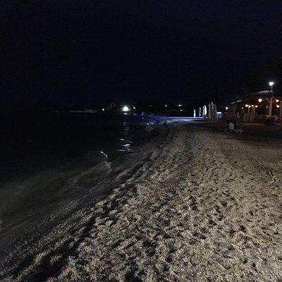 Blue Shark Beach Bar