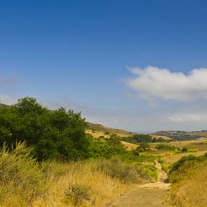 Bommer Canyon offers trails for hiking and mountain biking.