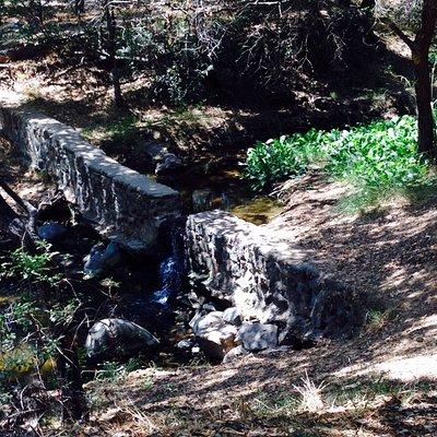 A small stream runs through the park and along the trail.