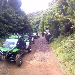 Trail4fun, buggy tours on Madeira island