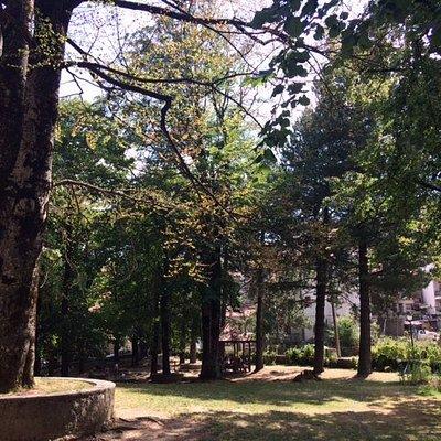 Άποψη του κήπου