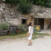 Tradition and culture of winemaking