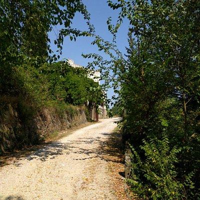 Sentiero che conduce alla villa