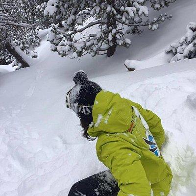 BOSQUE DE PORTAINE CON LOS MONITORES DE LA ESCUELA D' ESQUI I SNOW DE CIMS