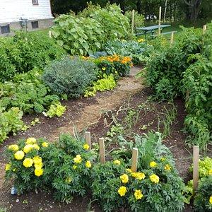 Garden next to Farm House