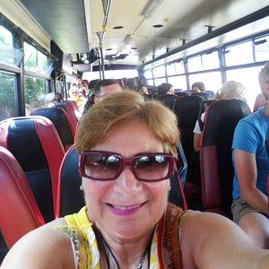 HF Bus