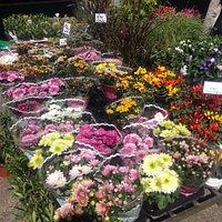 große Blumenauswahl beim Wochenmark :)