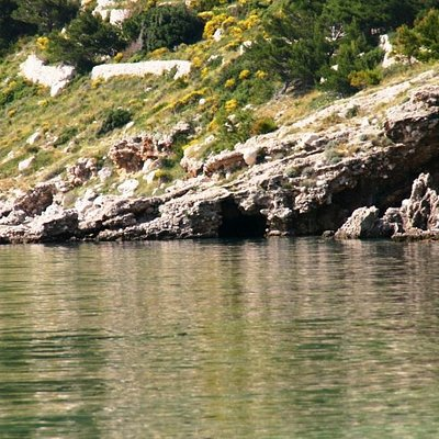 Medvidine cave, Drasnice