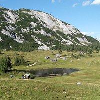 Tauplitzalm (top of Alpenstrasse)