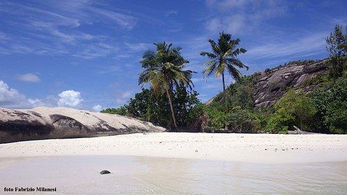 """La spiaggia di """"Robinson"""""""