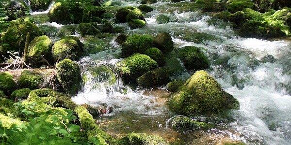 Río de Rabacallos