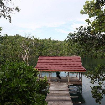 dermaga di danau