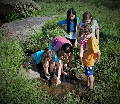 Exploring WIldrock's pristine stream