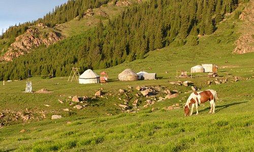 tours, horse riding, hiking, Eagle show, Yurt camp.