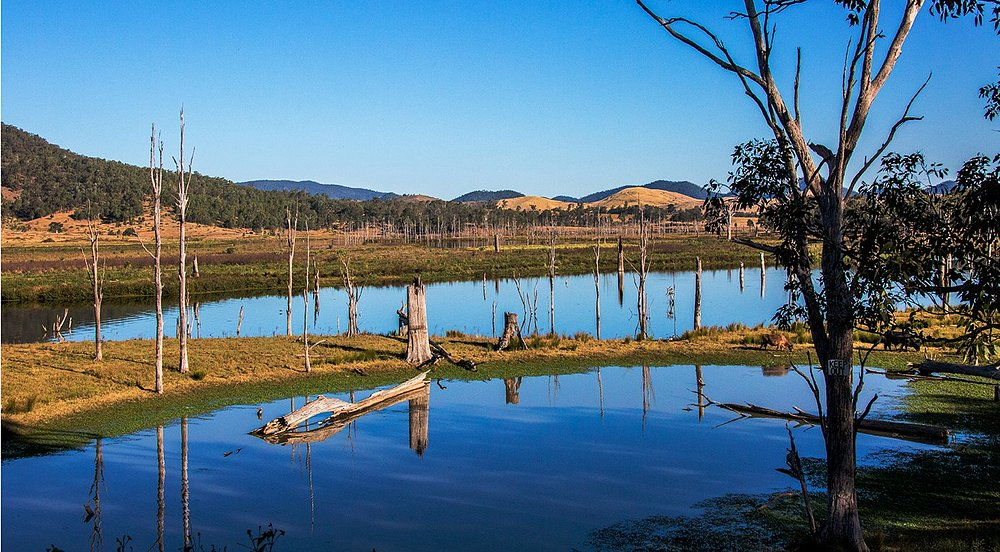 A drive in the countryside at Kilcoy