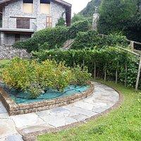 San Salvatore - Orto botanico 2