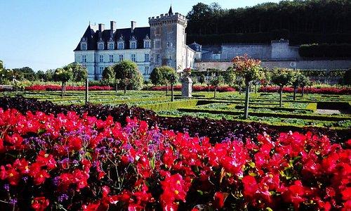 castello villandry