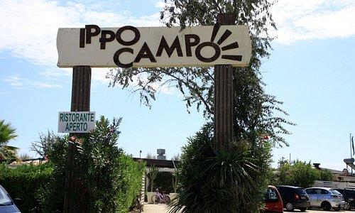 Bagno Ippocampo 277 - Entrata