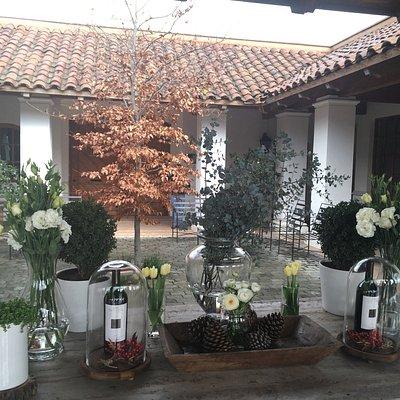 Casas Del Bosque  Entrada Vinhedos  Loja Sala degustação  Mirador