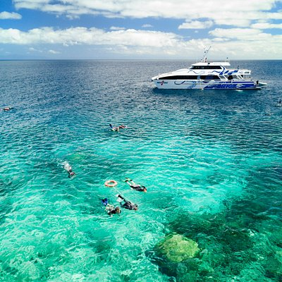 Free snorkel tours included in the price!
