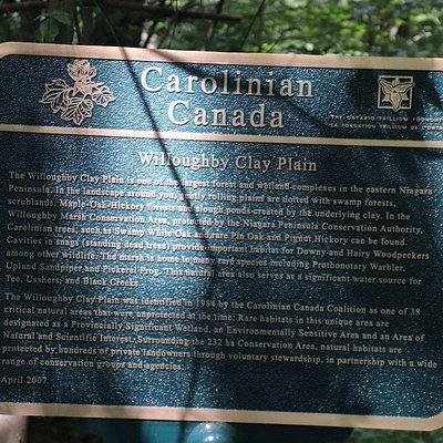 About the Carolinian Canada