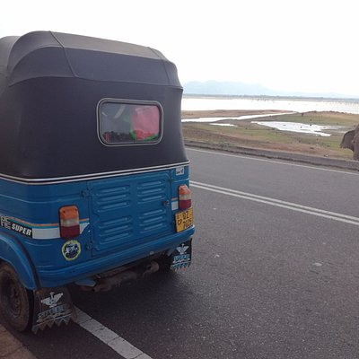 We also went to Udawalawe National Park with Pragash's tuk tuk !
