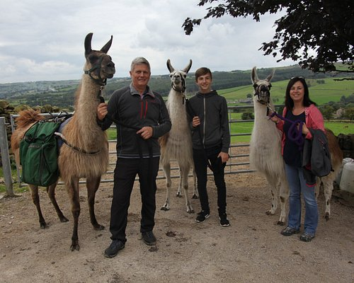 With our Llamas at the end of the trek