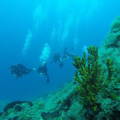 Bora wreck dive site