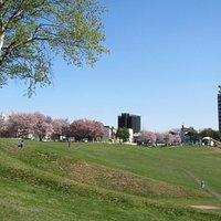 傾斜のある公園