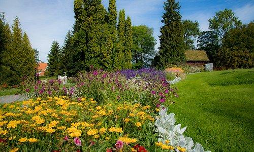 Sommerens blomsterprakt i Brekkeparken.