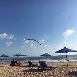 Sand Surf School