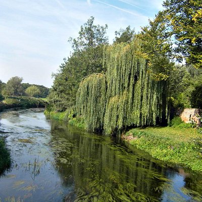 Fordwich River Tours