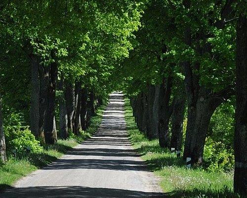 The roads of Kaliningrad oblast