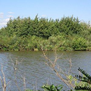 La visuale di una parte del lago dal casotto sulla sponda.