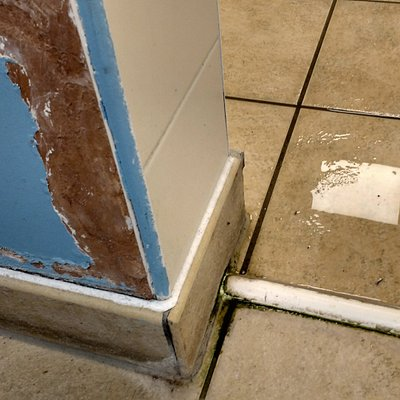 Peeling paint and mould in men's changing room