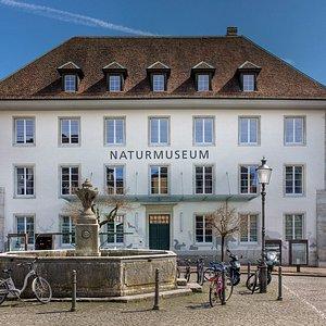 Das Naturmuseum auf dem Klosterplatz.